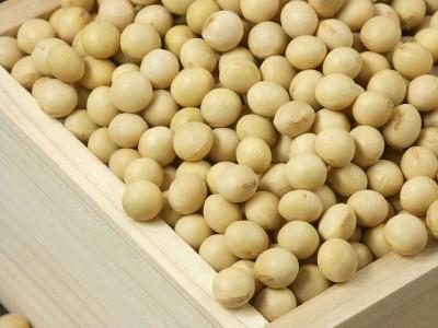 一人暮らし 栄養バランス 食事 大豆